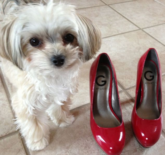 Emmy and shoes